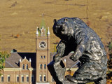 Grizzly Bear Statue at University of Montana  Missoula  Montana