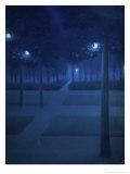 Nocturne Dans Le Parc Royal  Brussels