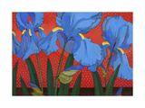 Irises and Red