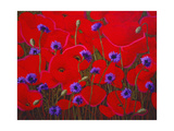 Poppies and Batchelor Buttons