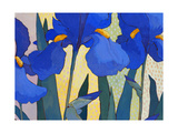 Faceted Irises