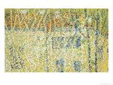 Landscape  c1906