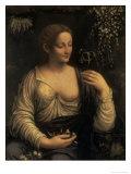 Flora  c1520