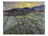 Enclosed Field with Rising Sun Saint-Remy Giclée par Vincent Van Gogh