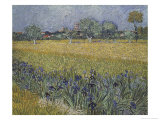 View of Arles with Irises