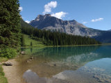 Edge of Mountain Lake in the Canadian Rockies