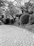 Shukkei-En Garden Detail  Japan