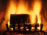Log Burning in Fireplace