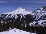 Sunshine Mountain Ski Resort  Banff  Alberta  CAN
