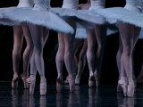 Ballet - Live Performance