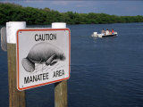 Manatee Warning Sign  Palm Island  FL