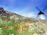 Windmill in Don Quixote Country  Spain