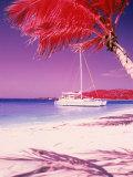 Catamaran on the Caribbean Shore