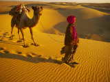 Camel Driver  Thar Desert  Rajasthan  India
