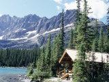 Cabin Near Lake O'Hara  Banff National Park  Alberta  Canada
