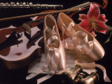 Ballet Shoes  Violin  Flute  and Flower