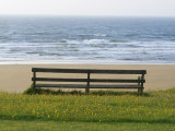 Bench Overlooking the Sea  Sutherland