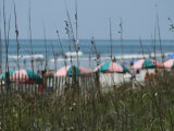 Umbrellas with Sea Grass  Myrtle Beach  SC