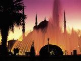Sultanahmet  Blue Mosque  Istanbul  Turkey