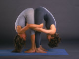 Women in Yoga Posture Together