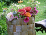 Dahlia  Papaver  Malva  Zinnia and Calendula  Collection of Picked Flowers in a Woven Basket