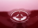 Water Drop in Red Puddle