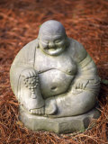 Statue of Buddha Sitting on Pine Straw