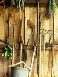 Garden Tools Hanging in Shed Fork  Shears  Rake  Lopper  Axe  Saw & Gardening Gloves