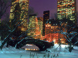 NYC  Central Park Snow and Plaza Hotel