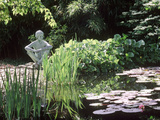 Pond  with Nymphaea  Iris  Pebble Beach & Sitting Statue