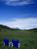 2 Chairs in Flower Field  Kenai  Alaska