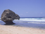 Lion Rock  Atlantic Ocean  Barbados