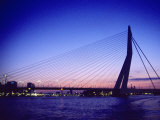 Erasmus Bridge  Erasmusbrug  Rotterdam