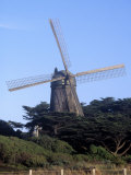 Dutch Windmill  Golden Gate Park  San Francisco