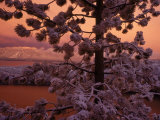 Lake Tahoe at Sunset with Snow  California