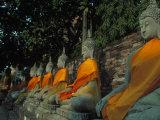 Buddhas  Wat Yai Chai Mongkhon  Ayuthaya  Thailand
