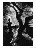 Graveyard  Nevern  Pembrokeshire  Wales
