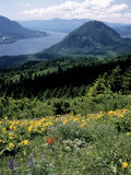 Columbia River Gorge  Gifford Pinchot Nf  WA