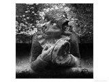 Statue at Toddington Manor  Gloucestershire  England