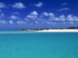Tropical Scenic  Turks and Caicos Islands