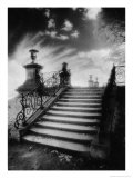 Steps  Chateau Vieux  Saint-Germain-En-Laye  Paris