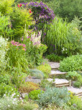 Gravel and Wood Steps Leading up Through Informal Summer Border
