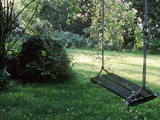 Wooden Swing Hanging from Apple Tree