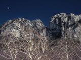 Seneca Rocks State Park  WV