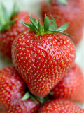 Strawberries (English)