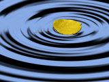 Aspen Leaf Landing on Water