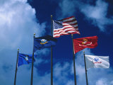 Flags of US Army  Navy  Marines  and Coast Guard
