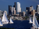 Sailboats and Skyline  Lake Union  Seattle  WA