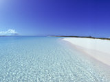 Bahamian Shoreline