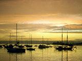 Sunset on Harbor  San Diego  CA